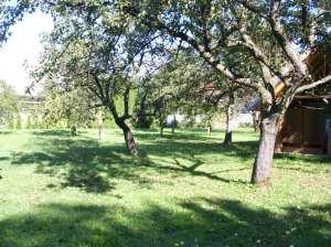 ˆcampsite orchard